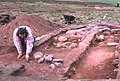 Archaeological dig on the Brown Caterthun - geograph.org.uk - 3417.jpg