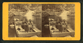 Arctic Philosopher in the Pool, Franconia Notch, N.H, from Robert N. Dennis collection of stereoscopic views 2.png