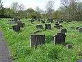 Arnosvale.grassy.graves.arp.jpg