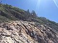 Arraial do Cabo - RJ - panoramio (21).jpg