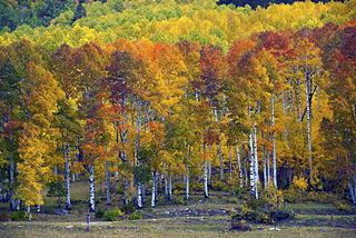 Aspen Hills Utah Property For Sale