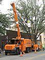 Asplundh cherry-picker tree-trimming truck.jpg