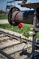Auschwitz - panoramio (42).jpg