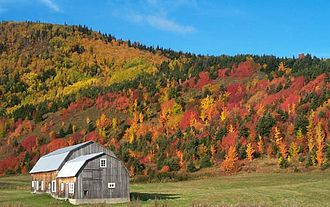 Quebec - Autumn landscape of Haute-Gaspésie
