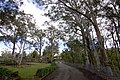 Avon NSW 2574, Australia - panoramio (12).jpg
