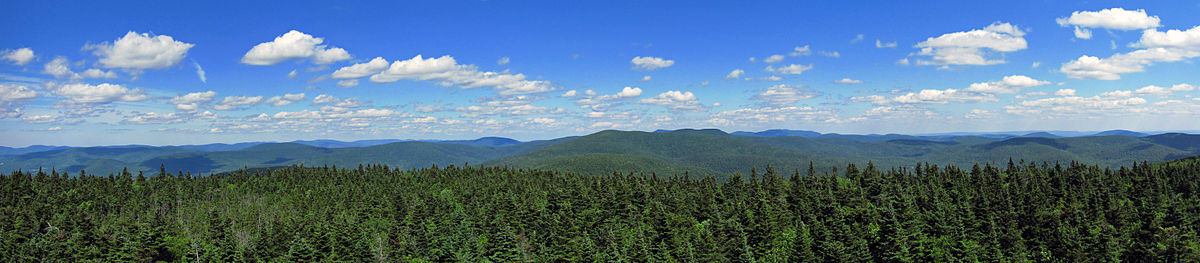 A forested expanse of mountains under a blue sky with fluffy white clouds
