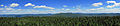 Balsam Lake Mountain fire tower panorama.jpg