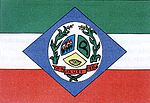 Bandeira de Maués.jpg