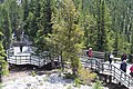 Banff Sulphur Mountain IMG 4189.JPG