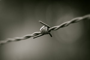 Barbed wire in black and white. This photo was...