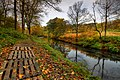 Barr Water at Glenbarr Abbey geograph-3199108-by-Steve-Partridge.jpg