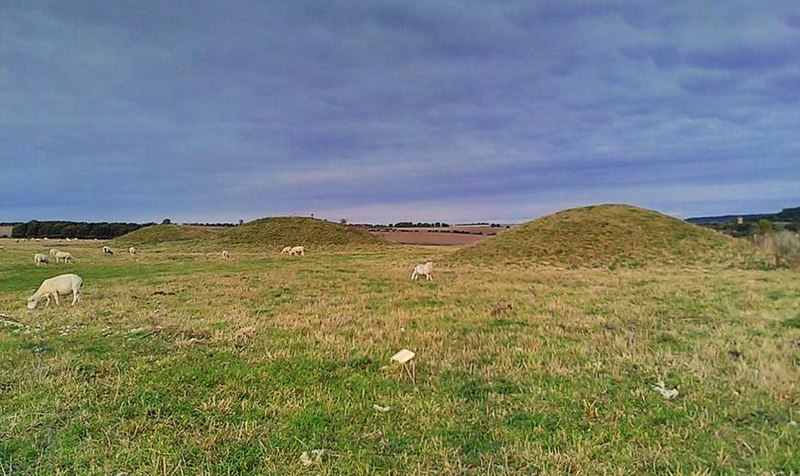 File:Barrows atop Overton Hill.jpg