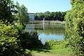 Bassin des Goachères à Massy en Essonne le 3 août 2015 - 20.jpg