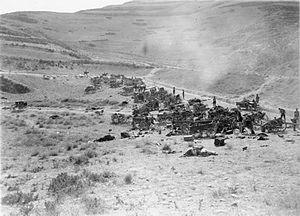Battle of Megiddo (1918) Destroyed Turkish transport.jpg