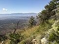 Bear Mountain, Sedona, Arizona - panoramio (73).jpg