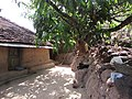 Beauitful and calm village House.jpg