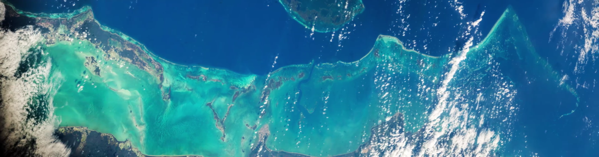 The Belize Barrier Reef photographed from the International Space Station in 2016 Belize Barrier Reef from space.png
