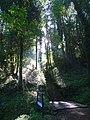 Belle-Isle-en-Tere. I.V Pendreo. Escalier.jpg