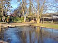 Belvoirpark - Unterer Teil 2015-01-05 15-33-12 (P7800).JPG