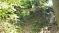 Bemelen-boom over pad in Bemelerbos.jpg