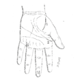 Bertillon - Identification anthropométrique (1893) 353 n&b.png