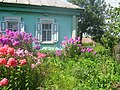 Beryozovka, Bryanskaya oblast', Russia, 242524 - panoramio.jpg