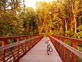 Bicycle Bridge - panoramio.jpg