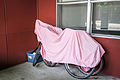 Bicycles under a Sheet.jpg