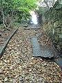 Bidston Hill - DSC04365.JPG