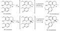 Biosíntesis de protoaporfinas.png