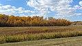 Birds Hill Provincial Park, Manitoba (481697) (9448065504).jpg