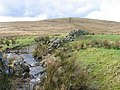 Birk Burn looking toward Lochbrowan Hill - geograph.org.uk - 352337.jpg