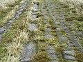 Blackstone Edge Roman Road - geograph.org.uk - 59483.jpg
