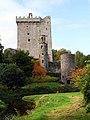 Blarney Castle-08-2017-gje.jpg