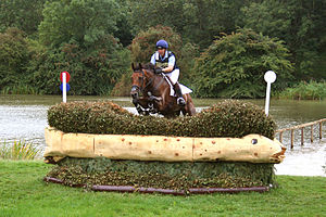 Horse jumping obstacles - Horse and rider negotiating a brush fence