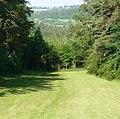 Blick nach Herzogenreuth - panoramio.jpg
