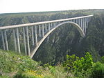 Bloukrans Bridge.jpg