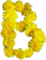 Blumen-B.png