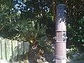 Boca Raton, FL, USA - panoramio (7).jpg