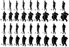 wikipedia obésité