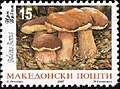 Boletus aereus. Stamps of Macedonia.jpg