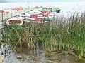 Boote am Laacher See.jpg