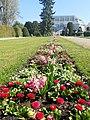Botanical Garden Berlin 2019-04-16 9880.jpg