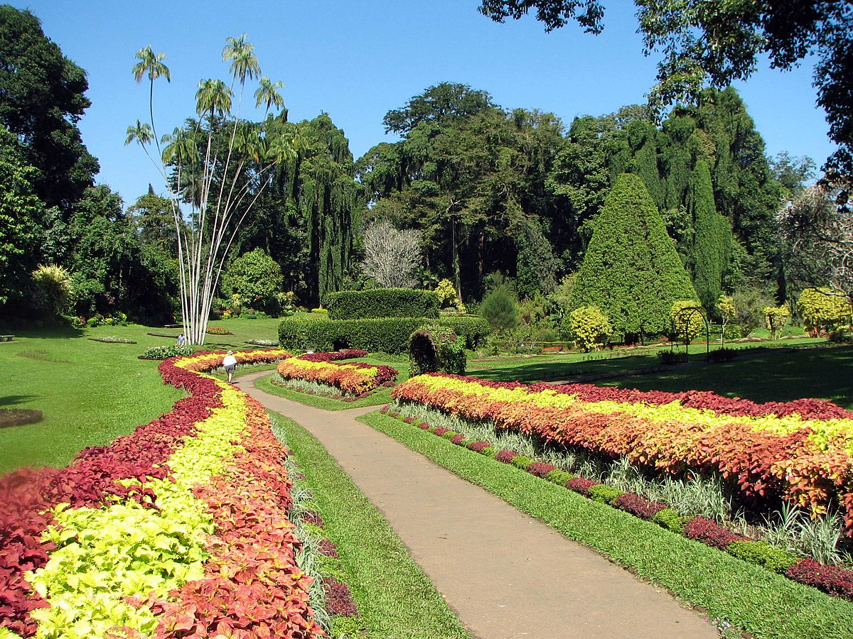 Royal botanical gardens peradeniya wikipedia for Botanical garden design