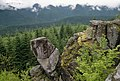 Boulders and Forest, Mt Hood National Forest (37003542026).jpg