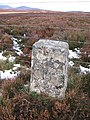 Boundary stone - geograph.org.uk - 658405.jpg
