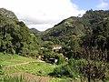 Brasil Rural - panoramio (47).jpg