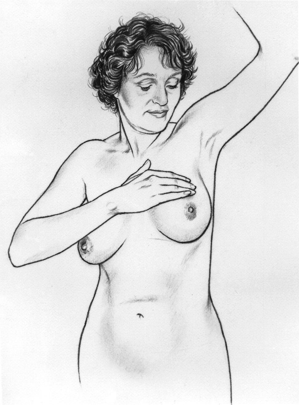 Breast self-exam illustration (series of 6) (3)