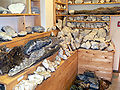 Breiddalsvik mineral collection 4.jpg