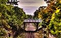 Bridging Tracks (48478162).jpeg